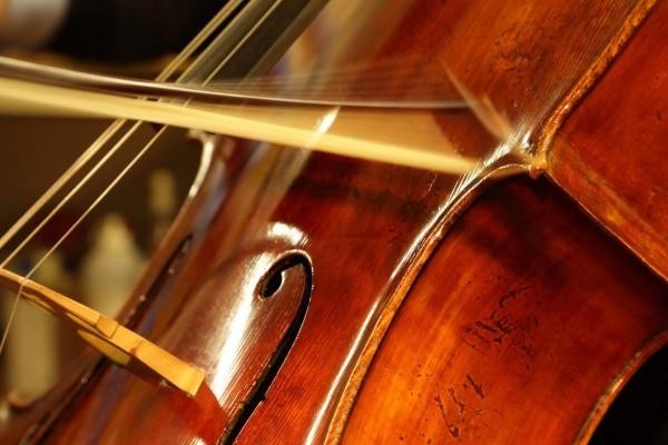 Erich Perrotta - Assistenza e Restauro - Sostituzione nasetto violoncello 13